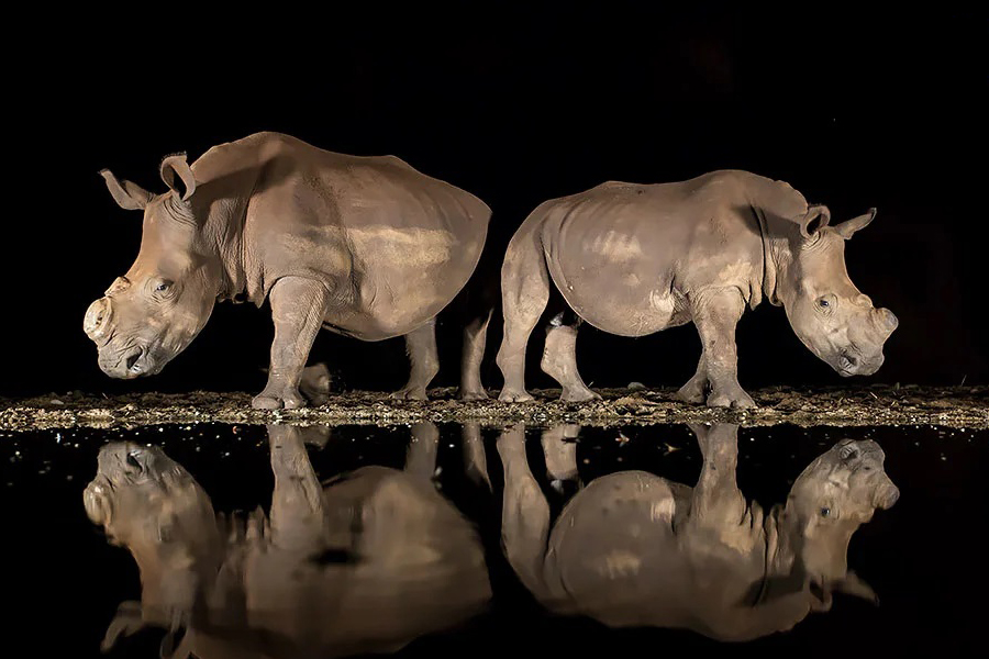 National-Geographic-Photo-Contest-Winners-Are-Stunning (1)