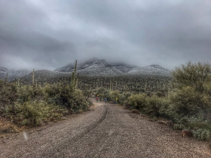 unusual-weather-snow-arizona-5c3f1f8a485b9__700