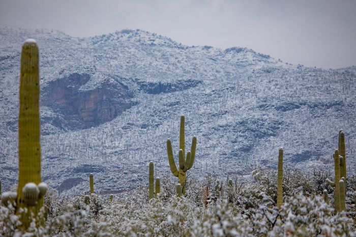 unusual-weather-snow-arizona-5c3f201b1e7cb__700