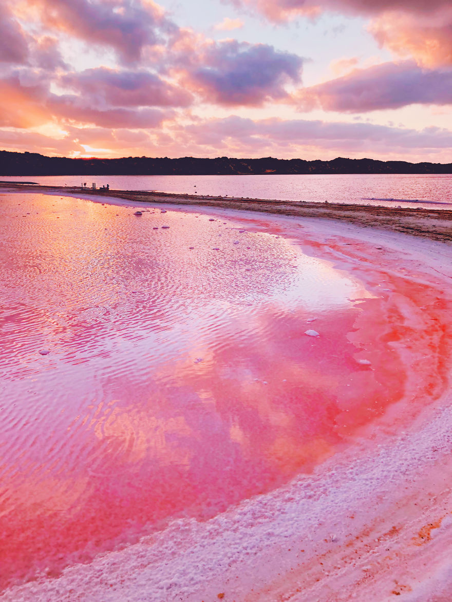 Magic-pink-lagoon-in-Western-Australia-5c6deffe4fc0c__880