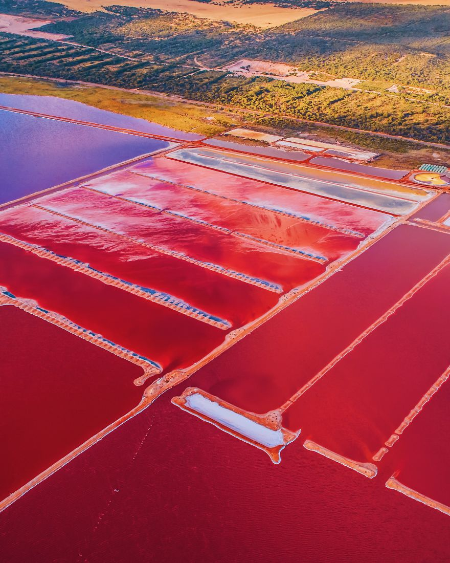 Magic-pink-lagoon-in-Western-Australia-5c6df0510afb2__880
