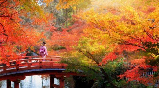 Vadvilág, természet, misztikus kultúra – 6 mesés úti cél hölgyeknek