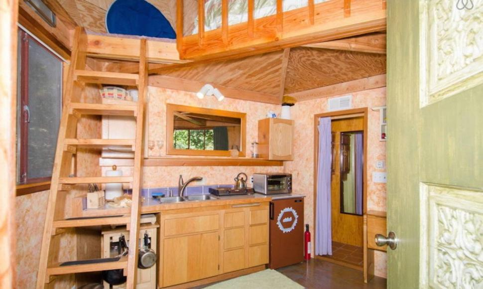 Most-Popular-Airbnb-Mushroom-Dome-Cabin-5-1020x610-970x580
