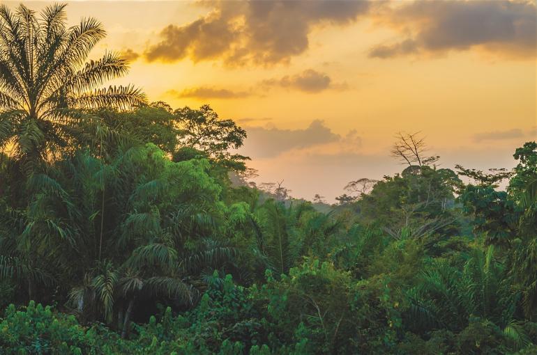 Liberia-770x510