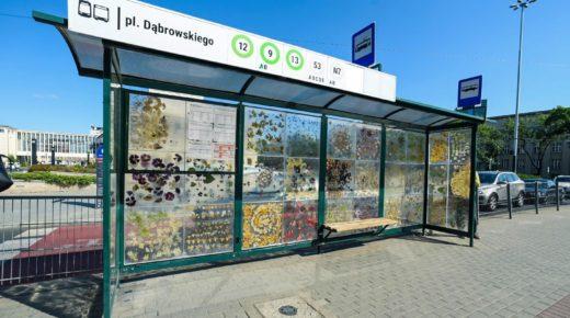 Egy lengyel villamosmegálló virágmúzeummá változott