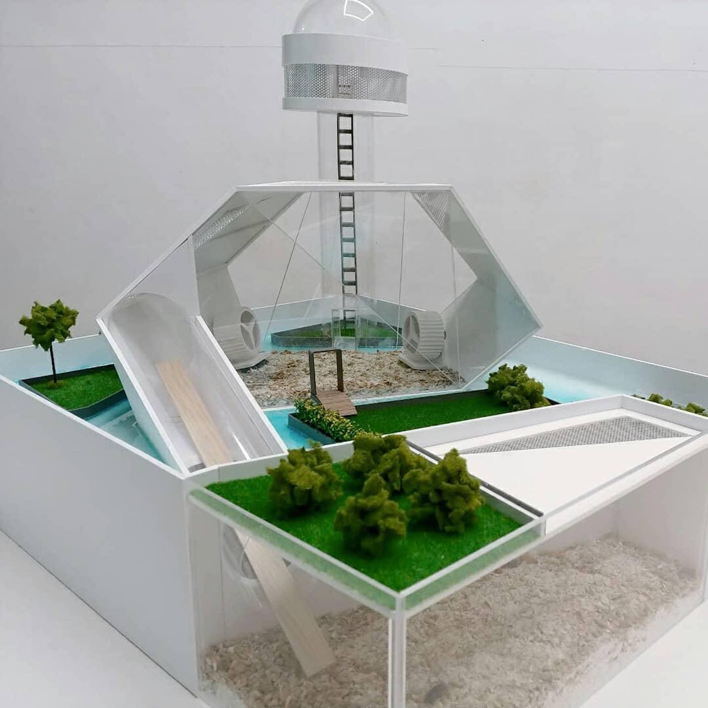 villas-hamsters-luxe-zit-studio-9