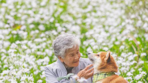 Szívmelengető fotók egy nagymama és kutyája barátságáról