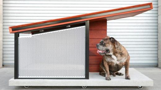 A Rah Design most elkényezteti a kutyákat – Itt a luxus kutyaház