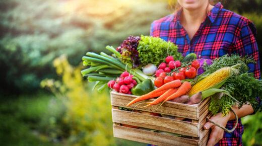 Ezért nem mindegy, hogy mikor és milyen zöldséget fogyasztunk